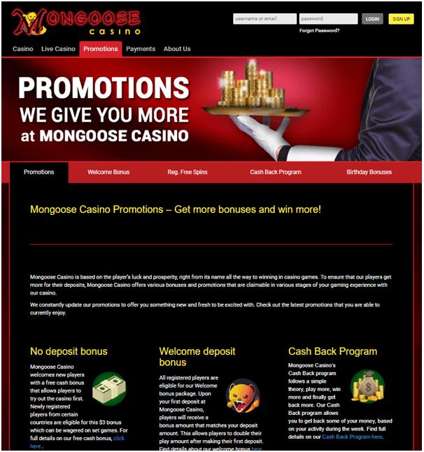 Bonus offers at Mongoose casino